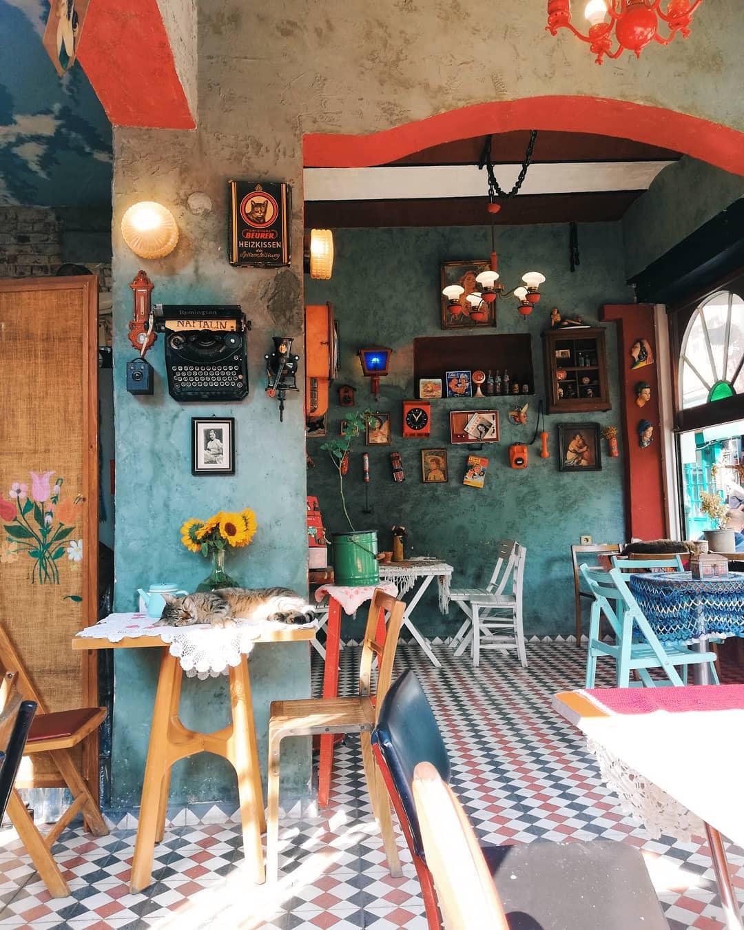 Cafe Naftalin K